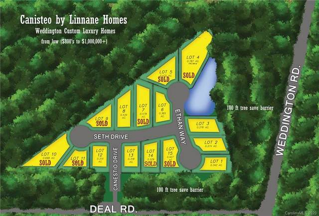 2206 Ethan Way, Weddington, NC 28104 (#3651210) :: Puma & Associates Realty Inc.