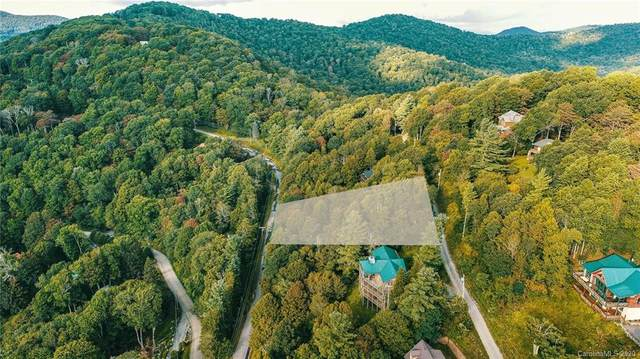 512 Sarvis Lane, Mars Hill, NC 28754 (#3652900) :: Stephen Cooley Real Estate Group