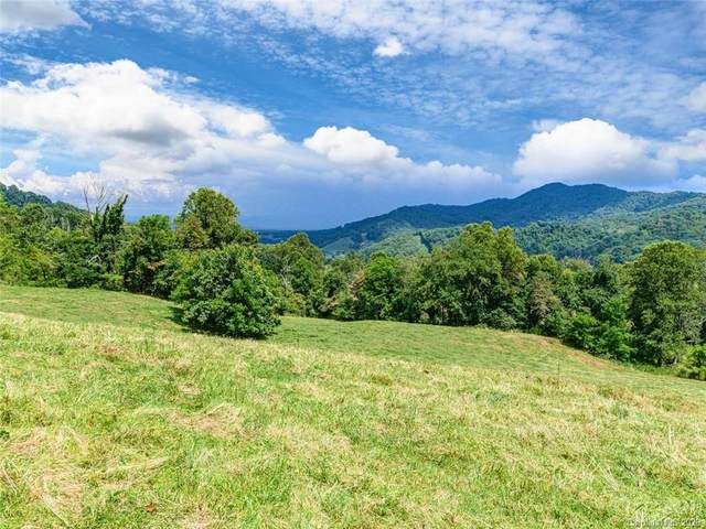 1397 Newfound Road, Leicester, NC 28748 (#3654068) :: NC Mountain Brokers, LLC