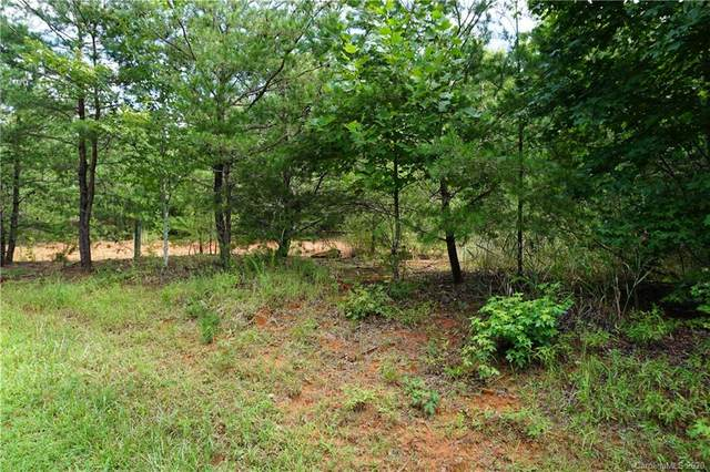 220 Captains Drive #233, Nebo, NC 28761 (#3654802) :: Stephen Cooley Real Estate Group