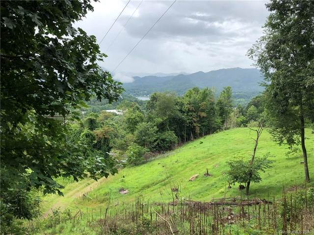 00 Liner Cove 1, 2, Waynesville, NC 28786 (#3654823) :: LePage Johnson Realty Group, LLC