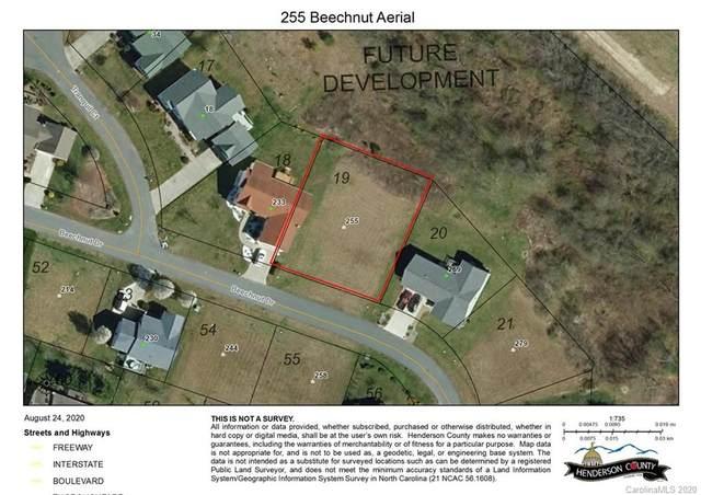 255 Beechnut Drive #19, Hendersonville, NC 28739 (#3654920) :: MartinGroup Properties