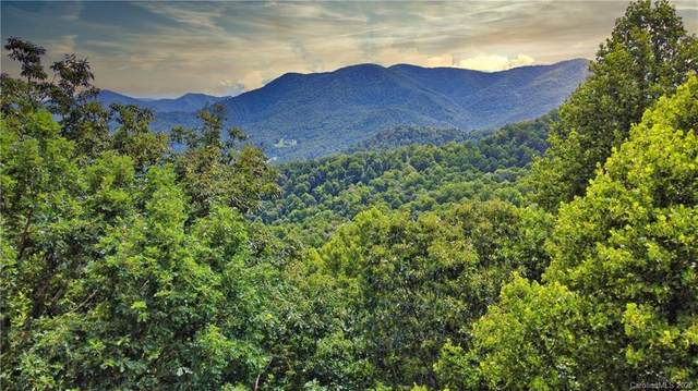 TBD Upward Way, Waynesville, NC 28785 (#3655352) :: Ann Rudd Group