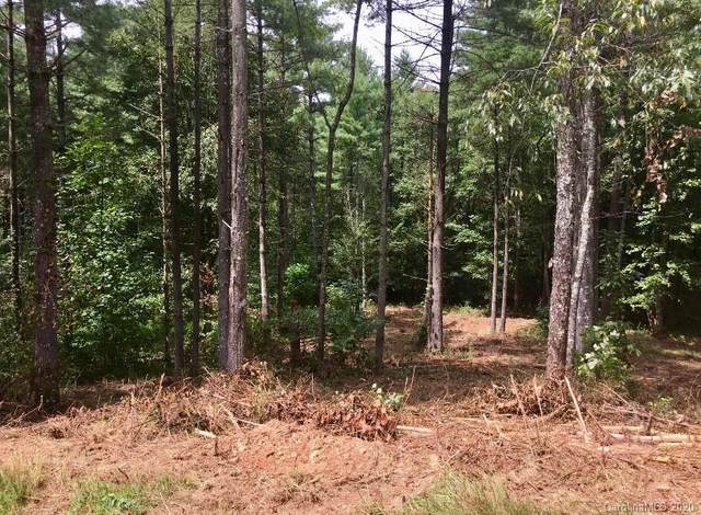 3381 & 3405 Peninsula Pointe Drive NW, Valdese, NC 28690 (#3655595) :: Mossy Oak Properties Land and Luxury