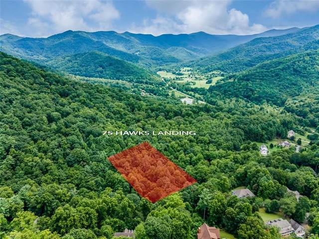 75 Hawks Landing 18 & 19, Weaverville, NC 28787 (#3656651) :: Stephen Cooley Real Estate Group