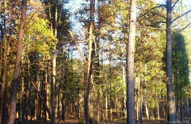 10405 Island Point Road, Charlotte, NC 28278 (#3657350) :: Mossy Oak Properties Land and Luxury