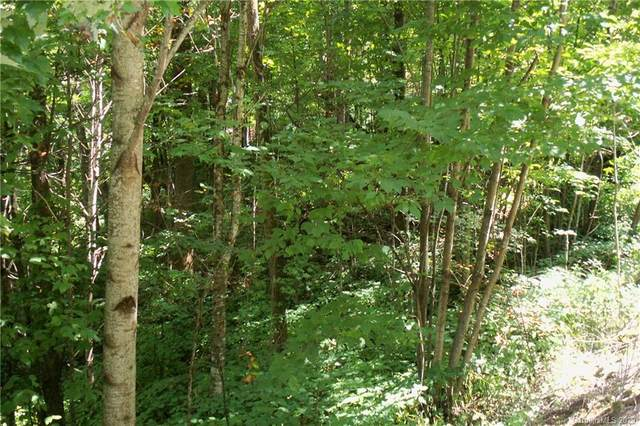 Lot 204 Slippery Rock Road, Waynesville, NC 28785 (#3657446) :: Homes Charlotte