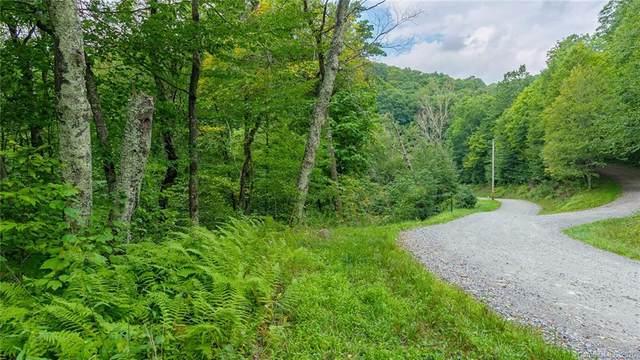 589 El Miner Drive, Mars Hill, NC 28754 (#3657994) :: Stephen Cooley Real Estate Group
