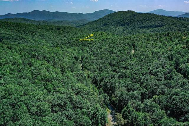 37 +/- Acres Sand Branch Road, Black Mountain, NC 28711 (#3658380) :: Robert Greene Real Estate, Inc.