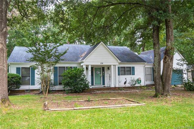 298 Swamp Fox Drive, Fort Mill, SC 29715 (#3658762) :: The Downey Properties Team at NextHome Paramount