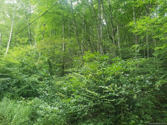 Lot 50 Seeley Cove Road, Clyde, NC 28721 (#3658945) :: Ann Rudd Group