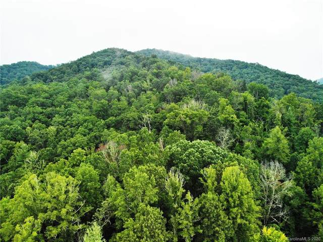 00 Whittemore Branch Road, Barnardsville, NC 28709 (#3659227) :: Mossy Oak Properties Land and Luxury