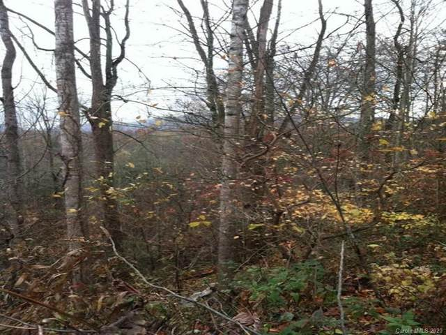 Lot 202 Point Of View Drive, Maggie Valley, NC 28751 (#3659478) :: Keller Williams Professionals