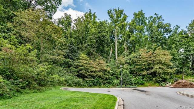 9999 La Grange Drive, Asheville, NC 28805 (#3660147) :: Keller Williams South Park