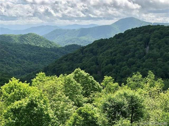 80 Goldleaf Road #80, Mars Hill, NC 28754 (#3660244) :: BluAxis Realty