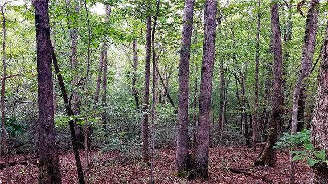 4.81 acre lot on Smoothstem Court #84, Nebo, NC 28761 (#3660987) :: Johnson Property Group - Keller Williams