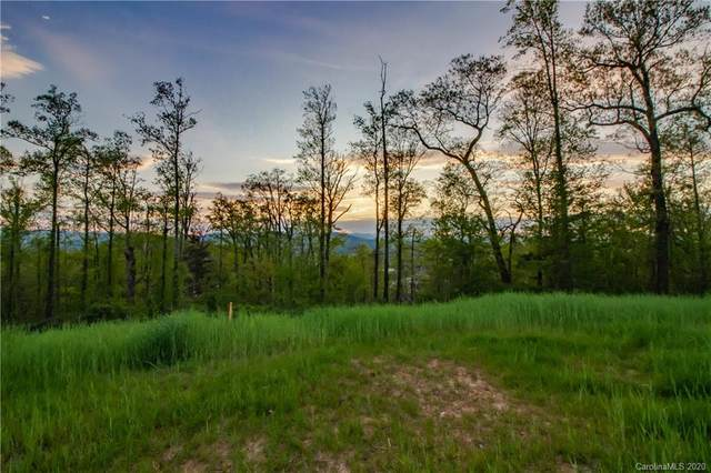 99999 Reservoir Road, Asheville, NC 28803 (#3661214) :: Carlyle Properties