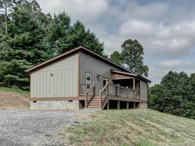 169 Duck Pond Drive, Marshall, NC 28753 (#3661255) :: MartinGroup Properties