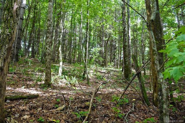 50 Biggerstaff, Spruce Pine, NC 28777 (#3661279) :: Mossy Oak Properties Land and Luxury