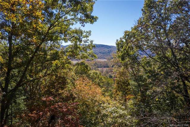 1018 Willow Ridge Drive 23A, Hendersonville, NC 28739 (#3661442) :: DK Professionals Realty Lake Lure Inc.