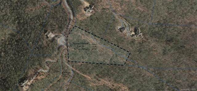 L25 Sylvan Byway #25, Brevard, NC 28768 (#3661482) :: Robert Greene Real Estate, Inc.