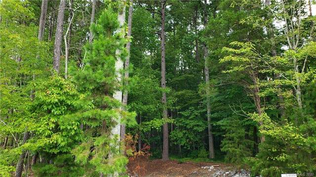 133 Parkstone Drive, Troutman, NC 28166 (#3661912) :: Caulder Realty and Land Co.
