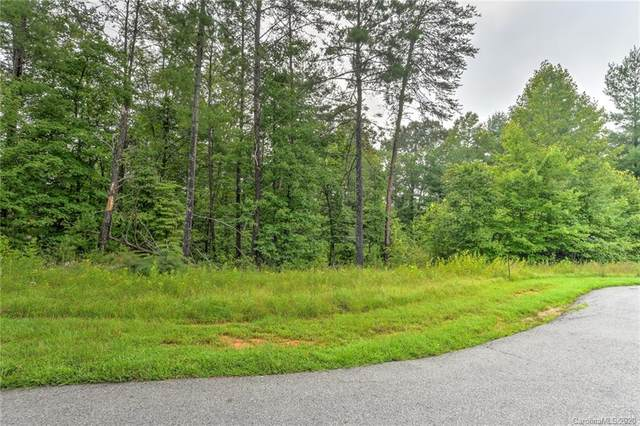 30 Grizzly Drive #65, Leicester, NC 28748 (#3663395) :: Stephen Cooley Real Estate Group