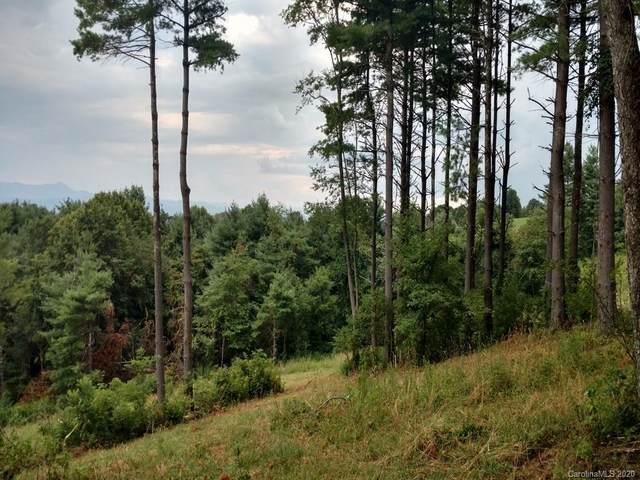 26 Bear Tree Court, Hendersonville, NC 28792 (#3663502) :: LePage Johnson Realty Group, LLC