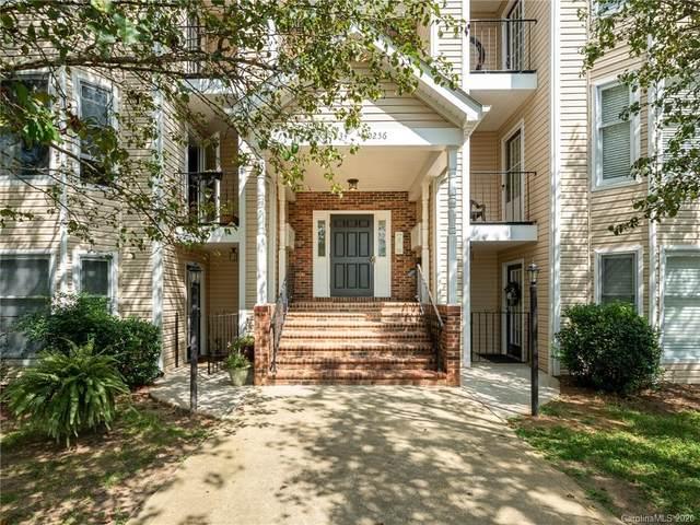 10248 Rose Meadow Lane, Charlotte, NC 28277 (#3663666) :: LePage Johnson Realty Group, LLC