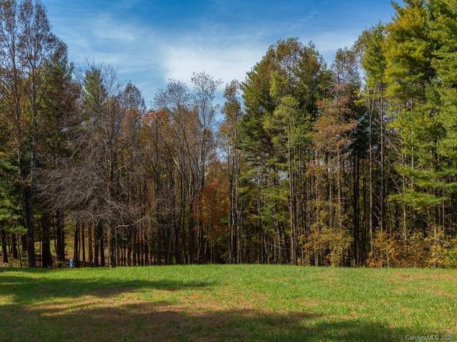 0 Dancing Bear Drive #195, Hendersonville, NC 28735 (#3664004) :: LePage Johnson Realty Group, LLC
