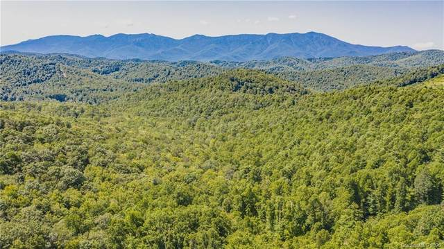 TBD Boyd Cemetary Road, Spruce Pine, NC 28777 (#3664015) :: LePage Johnson Realty Group, LLC