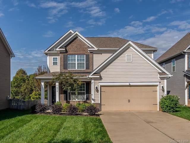 8810 Douglas Palace Court, Charlotte, NC 28278 (#3664334) :: High Performance Real Estate Advisors