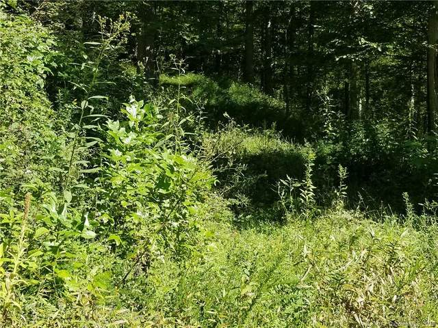 0 Hardwood Road, Burnsville, NC 28714 (#3664888) :: Robert Greene Real Estate, Inc.