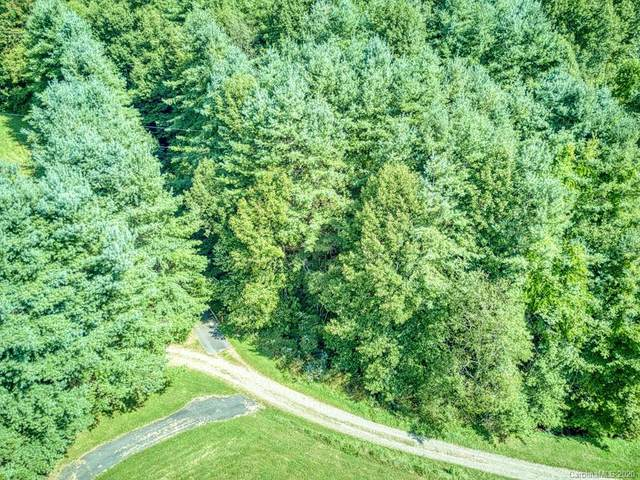 0 Orion Davis Road Tract 1, Waynesville, NC 28786 (#3664909) :: Stephen Cooley Real Estate Group