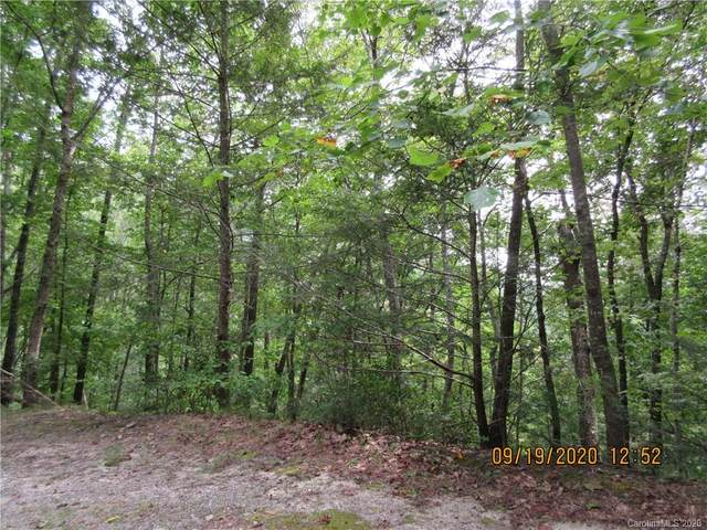Lot 164 Spanarkel Lane, Lake Lure, NC 28746 (#3664928) :: Keller Williams Professionals