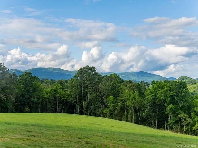 201 Turkey Ridge Road #8, Fletcher, NC 28732 (#3665303) :: Carolina Real Estate Experts