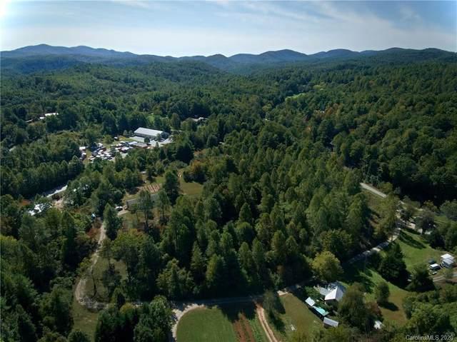 956 Ozone Drive, Saluda, NC 28773 (#3665656) :: DK Professionals Realty Lake Lure Inc.