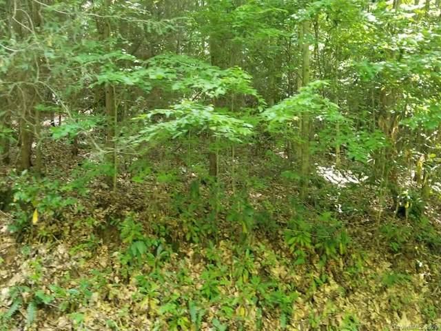 51 Cabin Creek Trail, Mars Hill, NC 28754 (#3665743) :: DK Professionals Realty Lake Lure Inc.