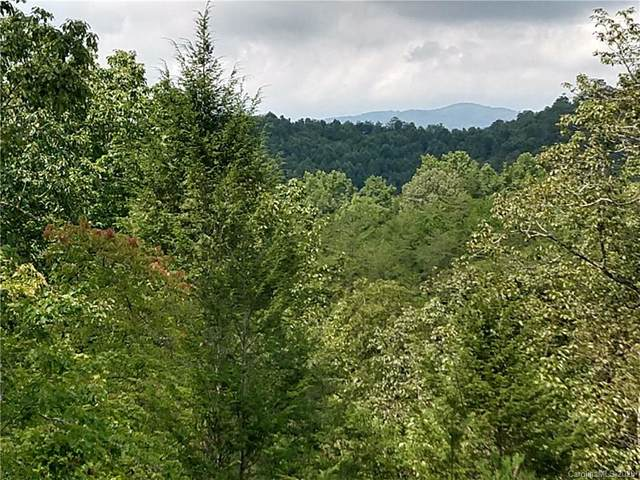 Lot 331 Willow Top Lane, Lake Lure, NC 28746 (#3666009) :: Keller Williams Professionals