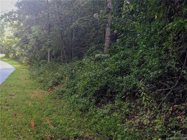 Lot 33 Black Bear Trail SE #33, Hendersonville, NC 28739 (#3666073) :: Stephen Cooley Real Estate Group