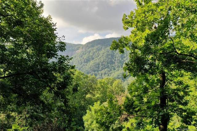 0 Cascada Vista Drive Lot 25, Chimney Rock, NC 28720 (#3666102) :: Ann Rudd Group