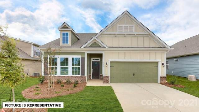157 Hanks Bluff Drive, Mooresville, NC 28117 (#3666604) :: DK Professionals