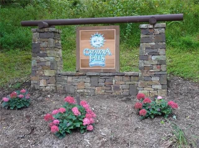 Lot 213 Catawba Falls Parkway #213, Black Mountain, NC 28711 (#3666610) :: Homes Charlotte