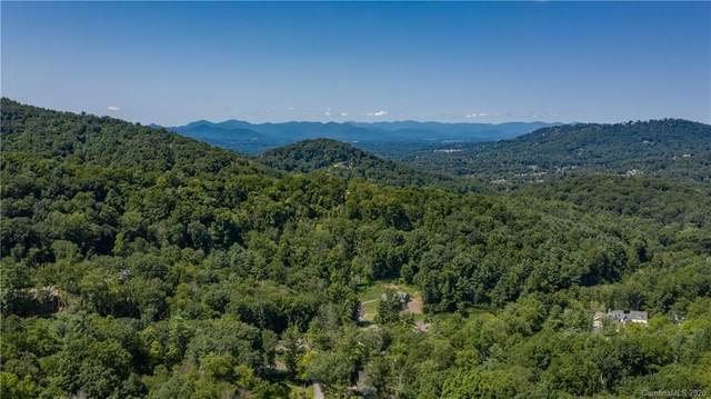 110 Bartrams Walk Drive #13, Asheville, NC 28804 (#3666613) :: Robert Greene Real Estate, Inc.
