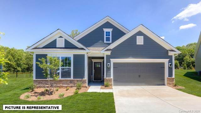165 Hanks Bluff Drive, Mooresville, NC 28117 (#3666664) :: Bigach2Follow with Keller Williams Realty