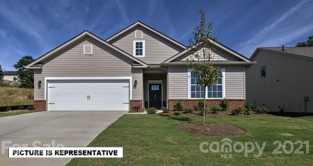 141 Hanks Bluff Drive #60, Mooresville, NC 28117 (#3666821) :: DK Professionals
