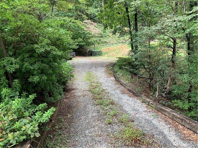 2940 Hogback Mountain Road, Tryon, NC 28782 (#3666862) :: Home and Key Realty