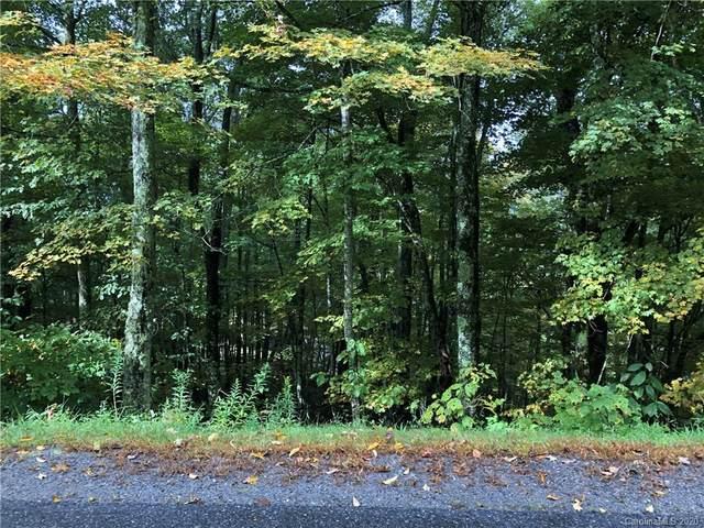 731 Mckinney Gap Road, Mars Hill, NC 28754 (#3667024) :: LePage Johnson Realty Group, LLC