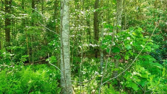 TBD Otter Lane 6 & 7, Spruce Pine, NC 28777 (#3667176) :: LKN Elite Realty Group | eXp Realty
