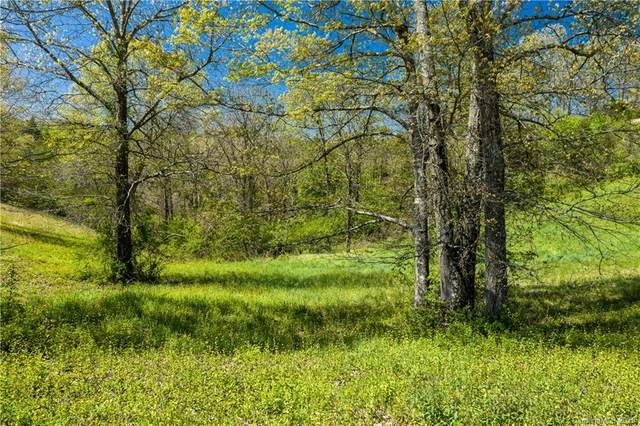 507 Dykeman Trail #79, Asheville, NC 28804 (#3667311) :: Mossy Oak Properties Land and Luxury